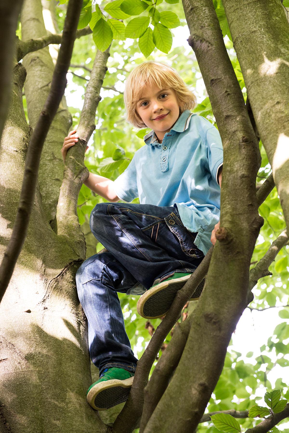 Familienfotografie Honeylight : Junge klettert im Baum