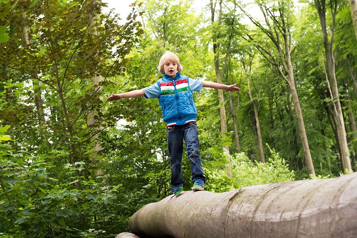 Familienfotografie Honeylight : Junge balanciert auf Hozstamm im Wald
