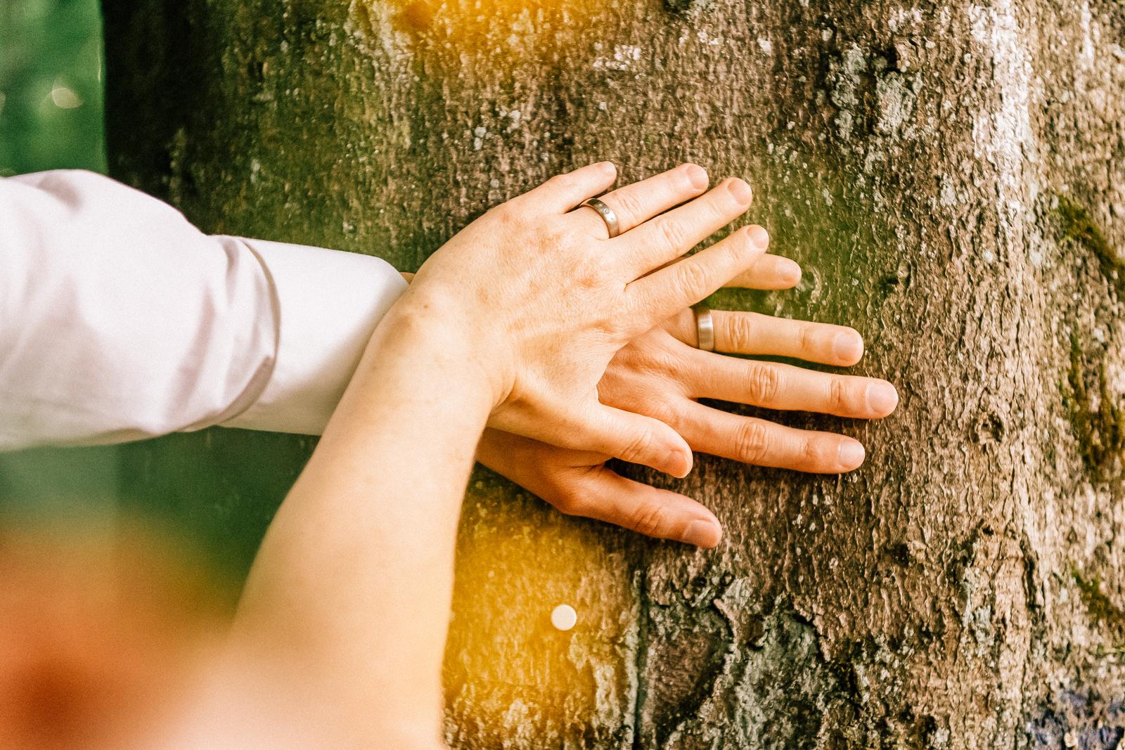 Wald in Schwerte, Hochzeit Hände am Baum